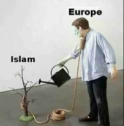europaislamgalgenk